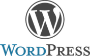 wordpress 3.1.1.