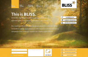 BLISS-Manchester-Website-design-mobile-development